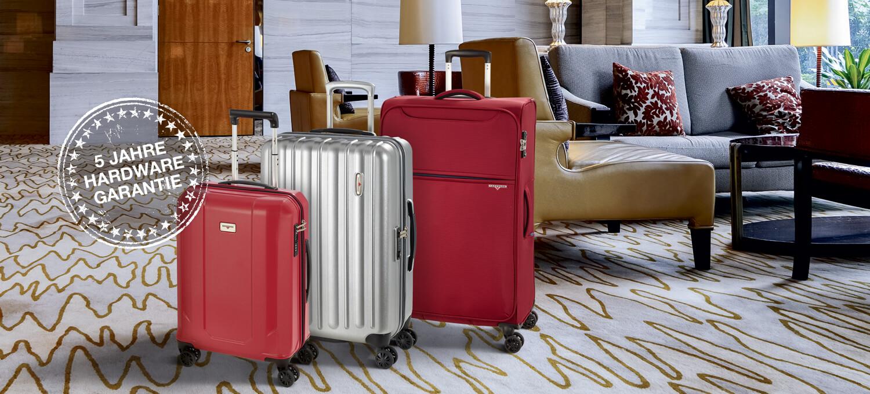 Примеры продукции дорожных чемоданов для покупки